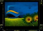 RVT3.5B320240CFWC81-maxi