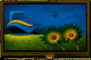 RVT4.3A480272CNWR36-maxi