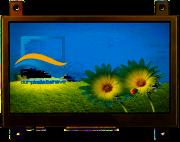 RVT4.3B480272CFWN00-maxi