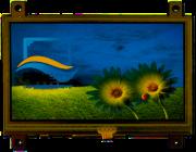 RVT4.3B480272CFWR00-maxi
