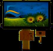 RVT7.0A800480TFWC00-maxi
