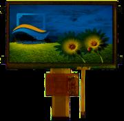 RVT7.0A800480TFWR00-maxi