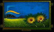 RVT70AQLFWN00-maxi